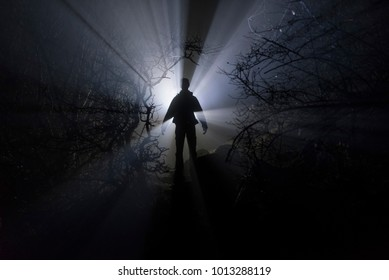 Silhouette of a man, in the rays of light in a branchy forest in the dark.