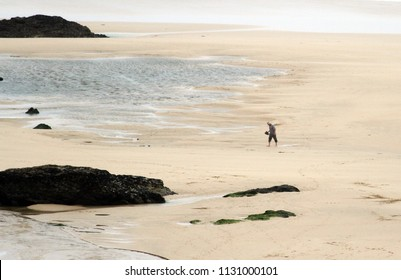 Silhouette of a man walking in the immense beach of Newquay, a popular destination for surfers. Newquay, Cornwall, UK