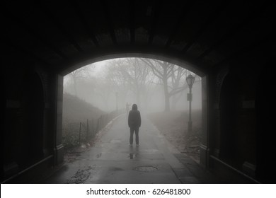 Silhouette of man walking through bridge at a misty Central Park