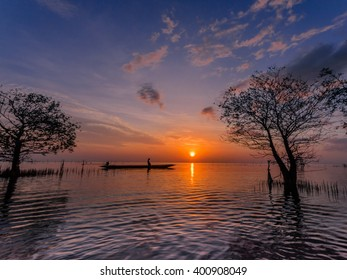 Silhouette of mangrove tree in the sea with colorful twilight sky.