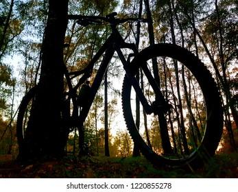 Silhouette of a mountain bike