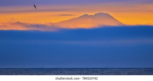 silhouette of mountain and bird against sunset sky