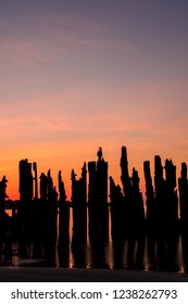 Silhouette of an old, destroyed, wooden pier in the Baltic sea during sunset in Latvia
