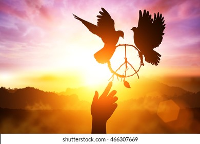 Silhouette of one helping hand desire to pacification sign shape and dove flying on sunset sky for freedom concept and international day of peace 2017