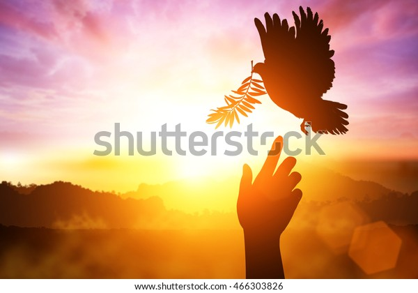 Silhouette of one Helping hand desire to Dove carrying olive leaf branch .Freedom concept and international day of peace 2017 .Peace  joy love