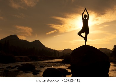 Silhouette of Outdoor Yoga, Young Woman in Tree Pose
