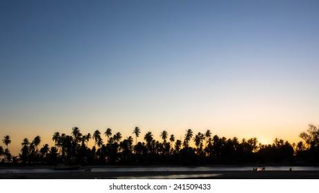 Silhouette of palm trees against clear sunset sky at Praia dos Garcez, Itaparica Island, Bahia, Brazil.