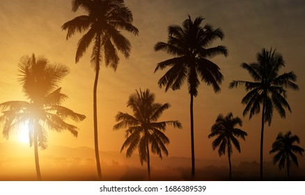 Silhouette of palm trees at sunset background.