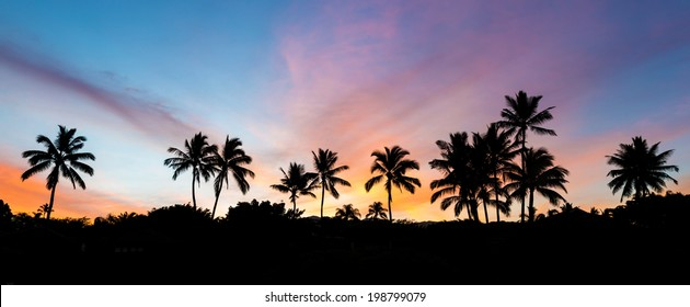 Silhouette of palm trees with a very colorful sky at sunrise from secret beach on the island of Maui, Hawaii