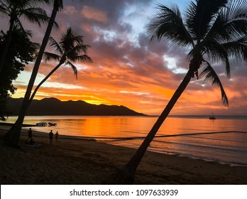 Silhouette of palms and people at sunset on Magnetic Island, Queensland, Australia.