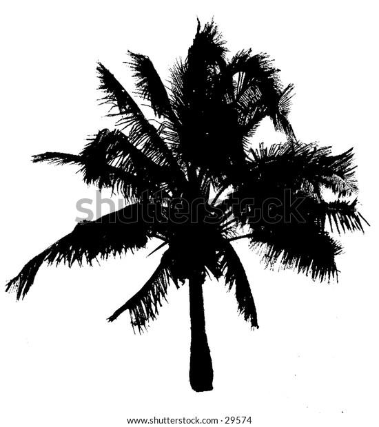 A silhouette of a palmtree