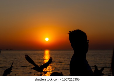 silhouette people taking seagull photo with sunset atResort, Thailand. decoration image contain certain grain  noise and soft focus.