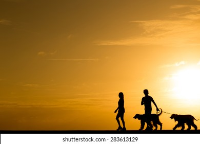 Silhouette people walking with the dog at sunset