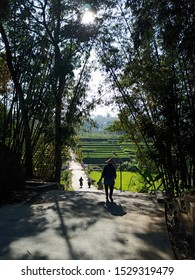 silhouette photo of farmers heading to the rice fields in the morning, Mojokerto, East java, Indonesia - 13 Oktober 2019