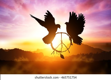 silhouette of pigeon dove holding branch in pacification sign shape flying on sunset sky for freedom concept and clipping path ,international day of peace 2017