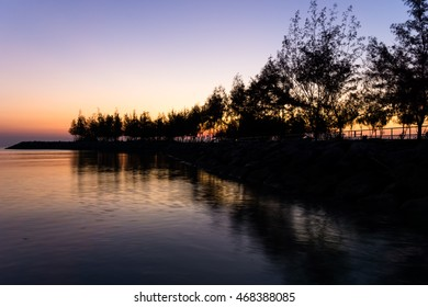 silhouette of pine along canal of jetty with wind turbine in the