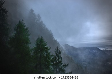 Silhouette of pine trees against cloud-covered mountains near the Konigsee in Bavaria, Germany