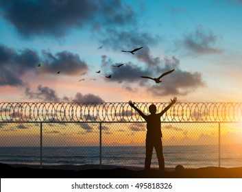 silhouette prisoners were imprisoned on the island alone, praying and free bird fly over blurred nature sunset background. hope and people concept and international day of peace.