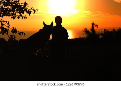 silhouette profile of German Shepherd dog obediently sitting nearby his owner man, boy walking on nature with pet at sunset in a field, concept friendship men and animal