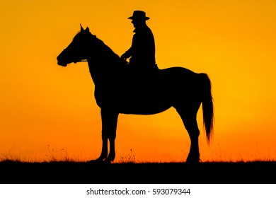 Silhouette of rider man and his horse in the sunset
