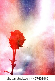 Silhouette of rose against sky with overlays