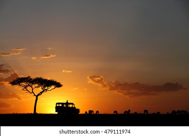Silhouette of a Safari jeep, tree and Wildebeest during sunset at Masai Mara