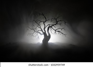 Silhouette of scary Halloween tree on dark foggy toned background with moon on back side. Scary horror tree