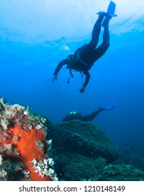 Silhouette of scuba divers underwater in the deep blue sea.