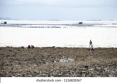 silhouette seeker on the shore