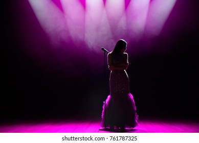 Silhouette of singer on stage. Dark background, smoke, spotlights