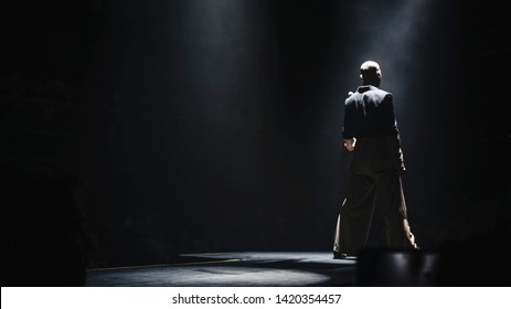 silhouette of singer's back performing on stage at a concert in the fog. Dark background, smoke, concert  spotlights.