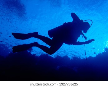 Silhouette of a single female scuba diver with outline of coral reef below.