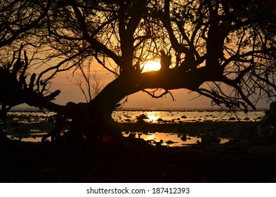 Silhouette of Sunset at Gili Trawangan, Lombok, Indonesia