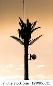 Silhouette of telecommunication tower mast decorated with Palm tree leafs during sunset in the Galapagos Island. Ecuador