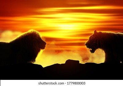 Silhouette of a tiger and a lion