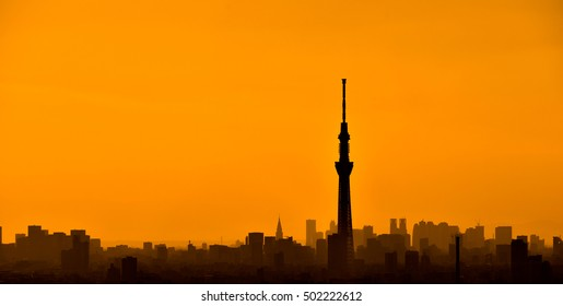 Silhouette of Tokyo skytree and skyscrapers in sunset orange