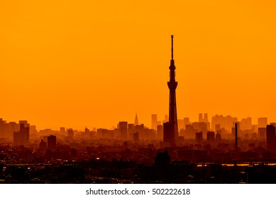 Silhouette of Tokyo skytree in sunset orange