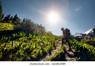 Silhouette of tourist in with backpack walking in the mountains. Outdoor travel concept