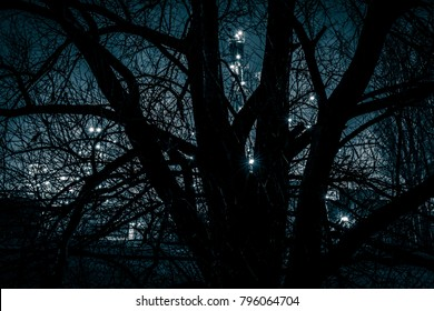 silhouette of a tree with at the background the lights of an oil refinery showing the old and new fuel, wood versus petrol.