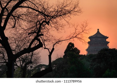 Silhouette of a tree and Buddha's Fragrance Tower in the Summer Palace at sunset