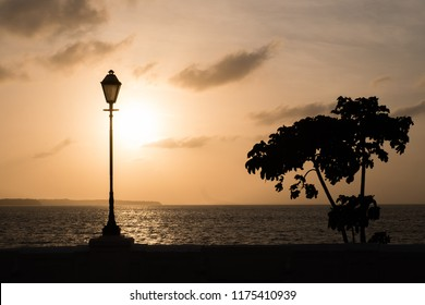 Silhouette of a tree and a lamp on a wall at sunset in Sao Luis do Maranhao