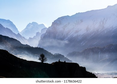Silhouette of tree on mountain background. Misty morning in Himalayas, Nepal, Annapurna conservation area