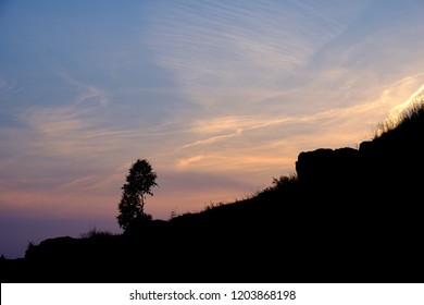 silhouette of a tree on the slope of a rock against the sunset sky, a landscape in the summer evening