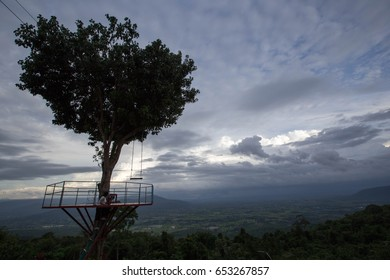 Silhouette  of a tree with sky background
