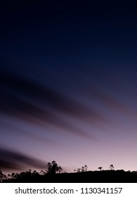 Silhouette trees at sunset in Colombian Andes Mountains