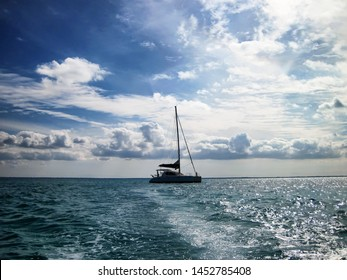 silhouette of twin hull sail boat on open ocean