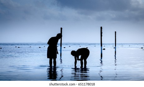 Silhouette of two people looking for seashells at the beach