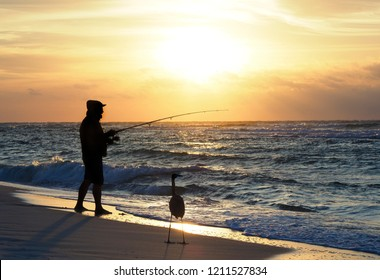 Silhouette of Unrecognizable Man Fishing on the Florida Coast at Sunrise as a Hopeful Great Blue Heron Looks on.