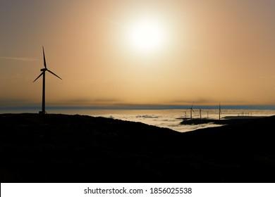Silhouette of wind power plants against sun above misty landscape in background. Wind turbines in nature of Plateau Paul da Serra, Madeira island, Portugal.