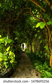 Silhouette Of A Woman Going Lonely Through Narrow Green Tunnel Of Trees